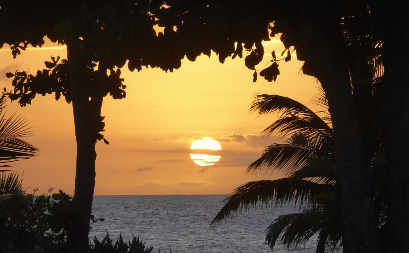 15 jours en Guadeloupe… Lebilan